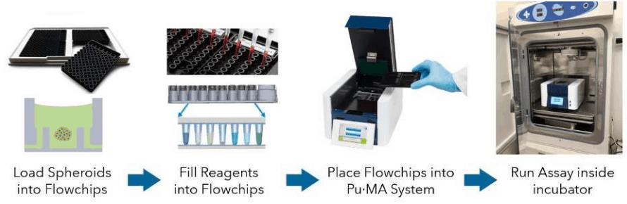 schematic of puma system workflow
