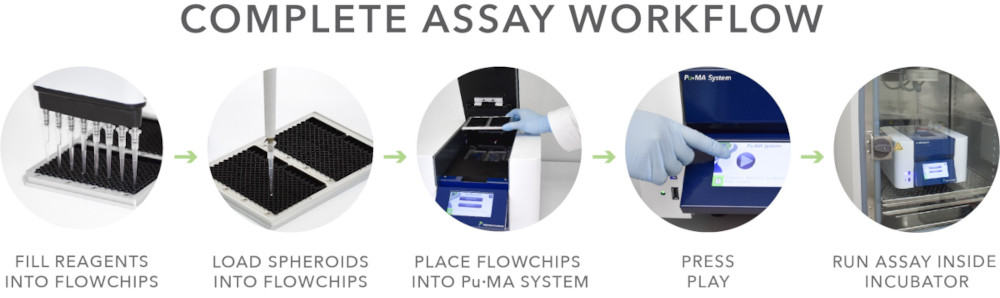 complete assay workflow