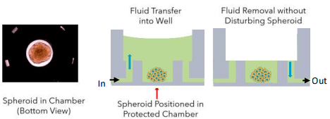 schematic flowchip fluid transfer