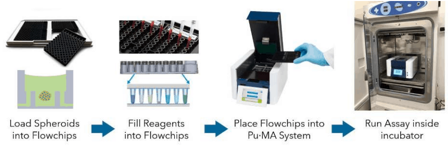 schematic of puma system workflow