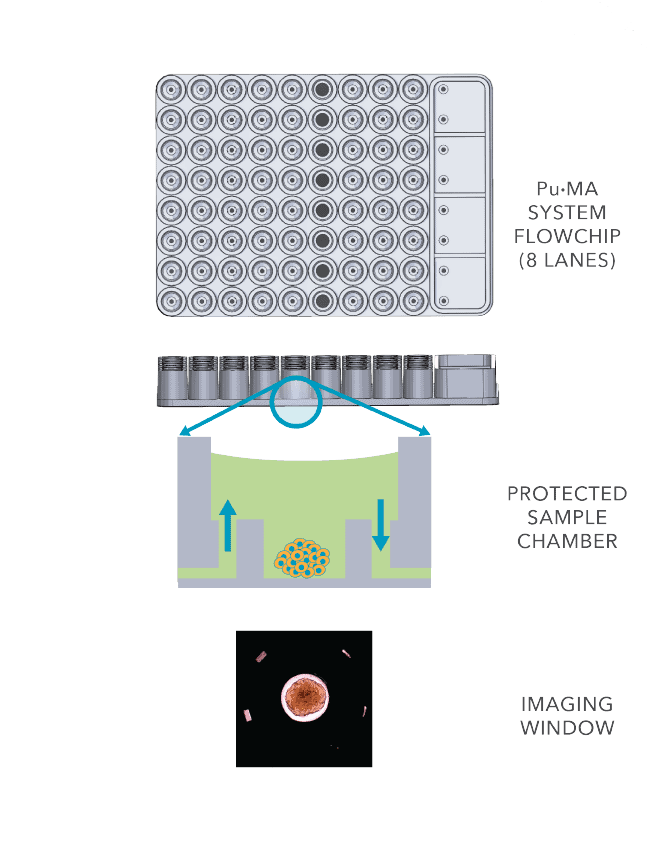 Protected sample chamber
