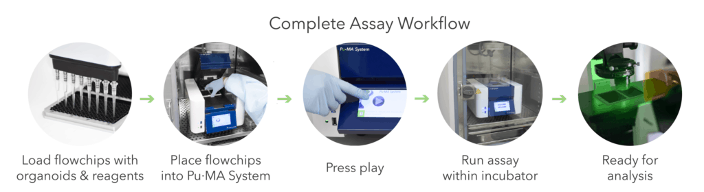 Automated 3D cell Assay workflow